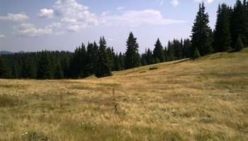 Селски туризъм в Родопи – вълнуващо преживяване