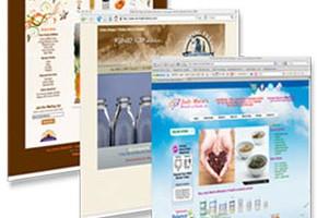 Цените на уеб дизайн услугите