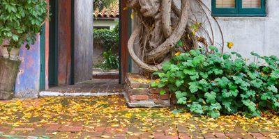 10 съвета да се подготвим за есента